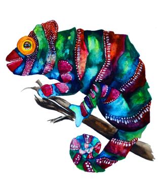 Chamäleon - Chameleon