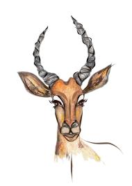 Impala - Impala